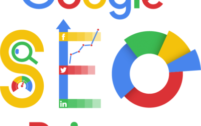 Google SEO Primer: Is Your Website Google Friendly?