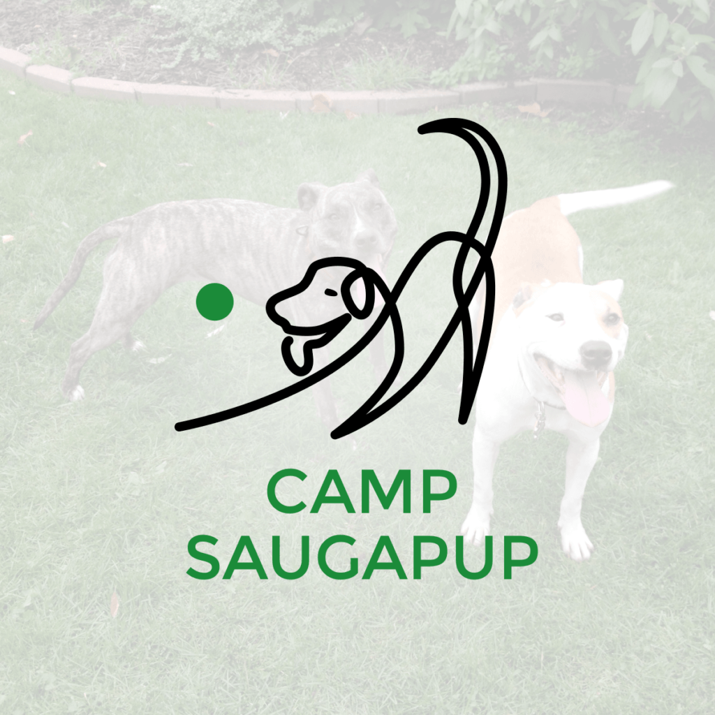 Unique Logo Design – Camp Saugapup